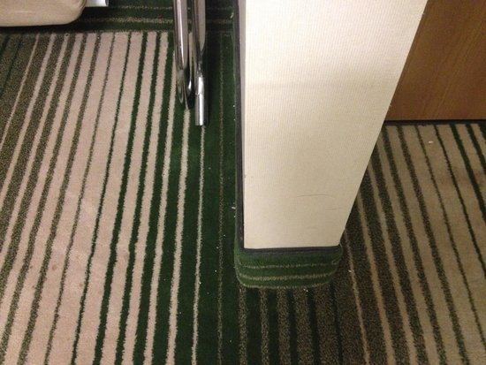 Rodeway Inn: Not vacuumed. The whole carpet looked like this