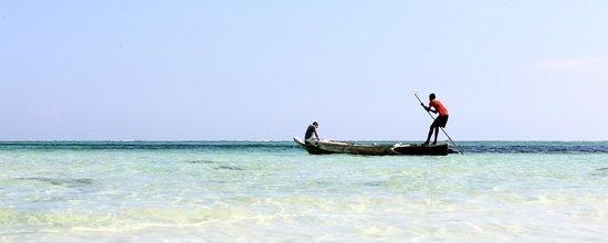 Michamvi Sunset Bay Resort : Local dhow