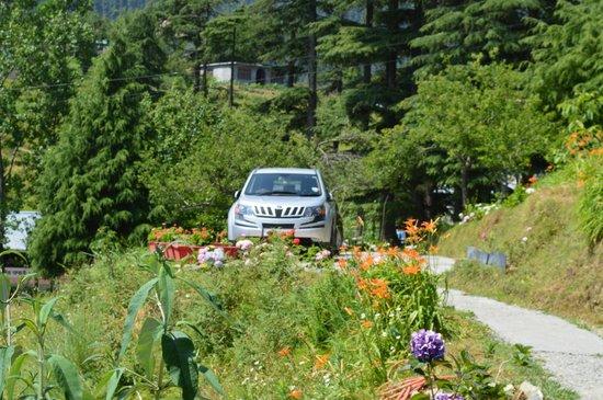 Deodar Manor: Parking Area