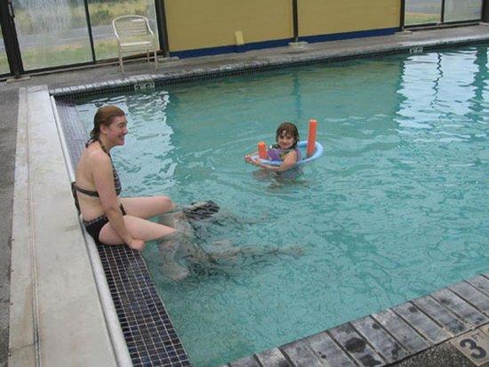 The Surfside Inn: Pool Fun
