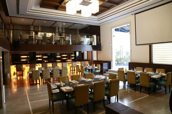 Hotel Pluto's : lounge