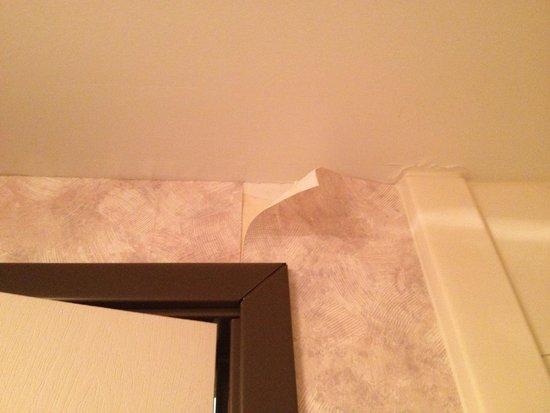 Rodeway Inn: Bathroom wall
