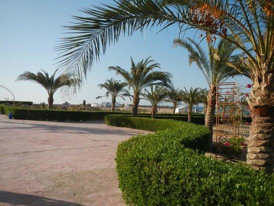 Fantazia Resort: Dai giardini verso la spiaggia si intravede il diving Vivasub esterno alla struttura