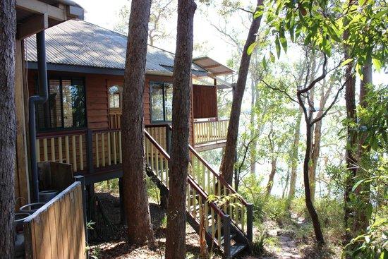 Eumarella Shores Noosa Lake Retreat: Cormorant Cottage