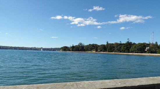 Royal Botanic Gardens : Along the route to Mrs Macqueries' Chair