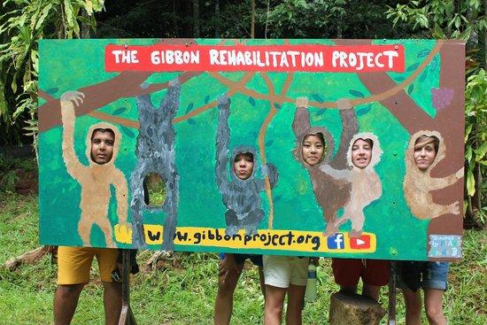 Gibbon Rehabilitation Project: GRP