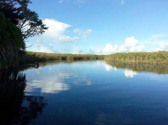 Okavango Delta: Boat Trip into the delta