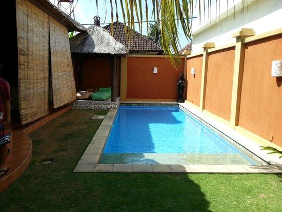 Bali Alizee Villas : La piscine