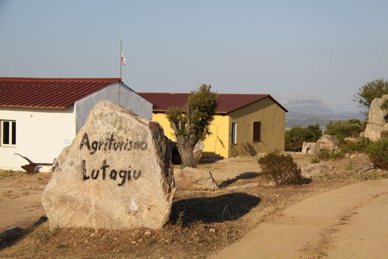 Azienda Agrituristica Lutagiu: esterni