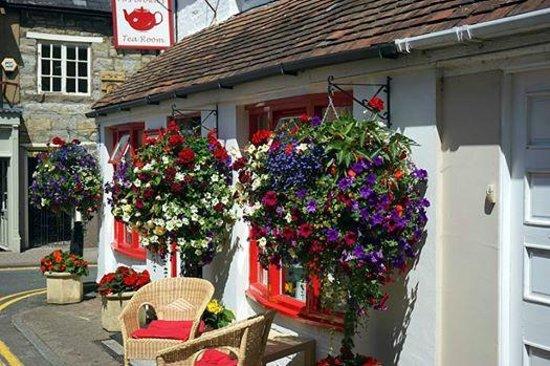 Mrs Brown's Tearoom: Winners Shipston in Bloom Town Business Category 2014