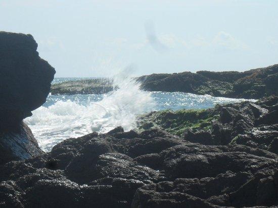 Playa Brujas: Zona de Piedras