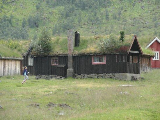 Norddal, นอร์เวย์: case di legno con il tetto d'erba (e alberi)
