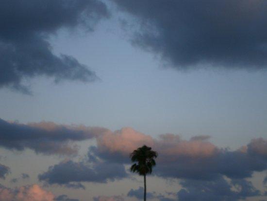 Gattopardo Park Hotel: Le coucher de soleil