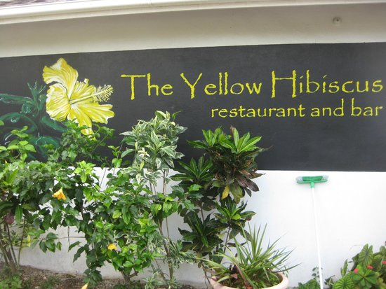 Palm Grove: The Yellow Hibiscus Restaurant