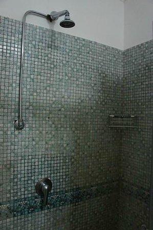 Hotel del Corso : Old shower head- wide spray
