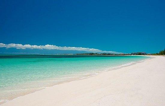 Ft. Lauderdale Beach Resort Hotel & Suites : Beach
