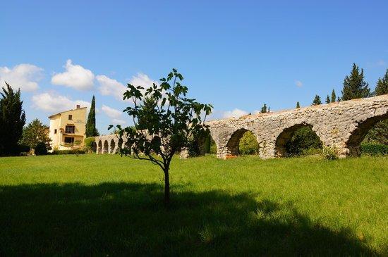 Moulin de la Camandoule: le domaine