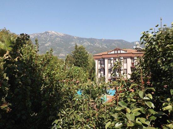 Ozturk Hotel Hisaronu: hotel