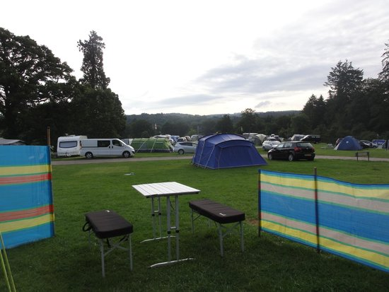 Whitemead Forest Park: View from our tent on a beautiful morning