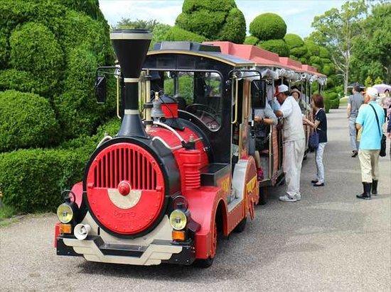 Hamamatsu Flower Park : はままつフラワーパーク1