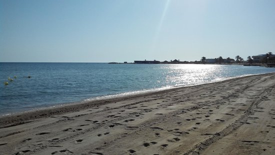 Club Marmara Zahra : La plage au petit matin