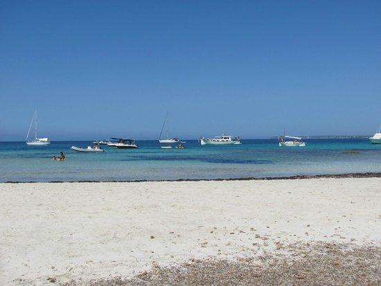 Es Trenc : spiaggia