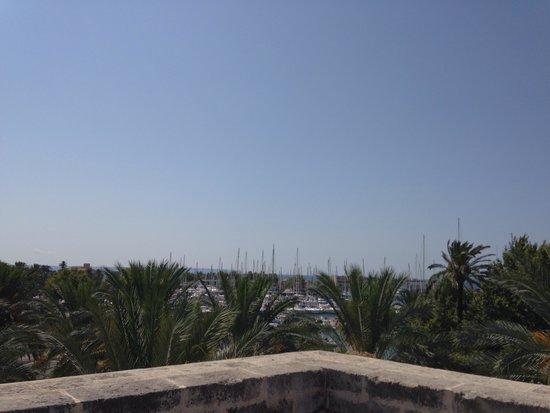 Museum Es Baluard: View