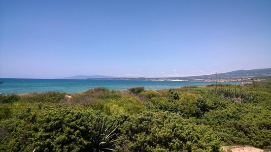 Is Arenas Resort : Aussicht von der Beach Bar