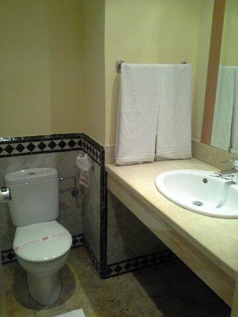 Ibis Casa Voyageurs: Порепанная ванная