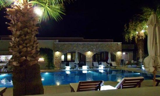 Rose Bay Hotel: Blick von unserer Terrasse
