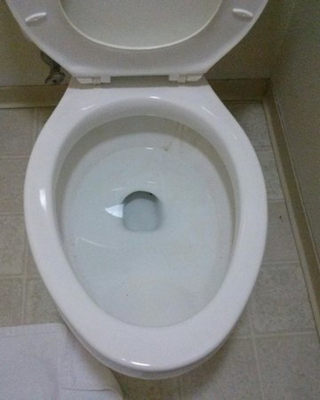 Motel 6 Truth or Consequences : Dirty toilets