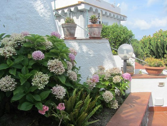 Residence Parco Mare Monte: Наш этаж в отеле