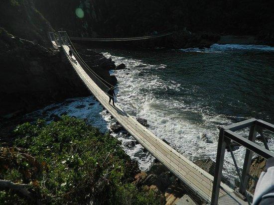 Storms River Suspension Bridge: Bridge