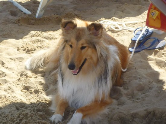 La Spiaggia delle Donne: nancy