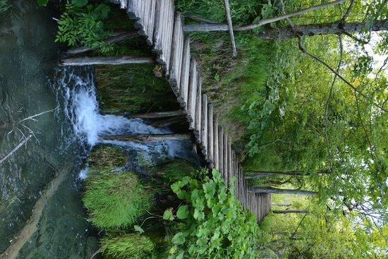 Plitvice Lakes National Park : Parc National des Lacs de Plitvice