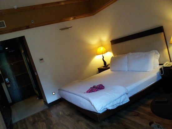 Citrus Manali Resorts: river view room