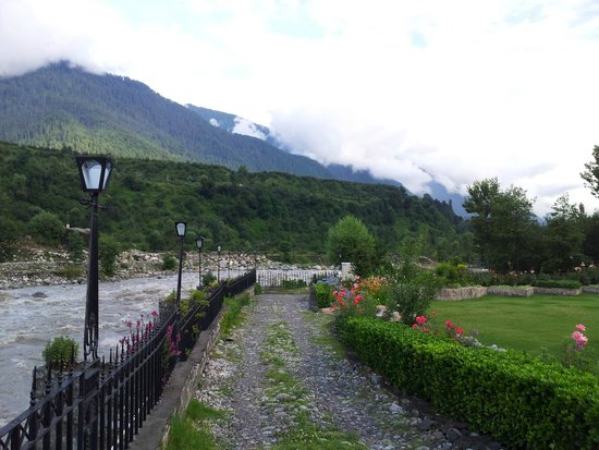 Citrus Manali Resorts: view from room