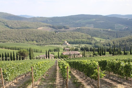 Franco Wine Tour Experience: Albola Castle