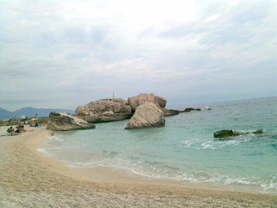 Pescaturismo Delfino I : spiaggia
