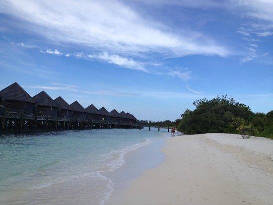 Kuredu Island Resort & Spa: Водные бунгало