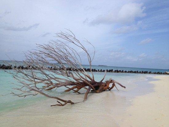 Kuredu Island Resort & Spa: Другая сторона острова