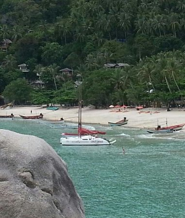Samui Ocean Sports & Yacht Charter: the crazy horse