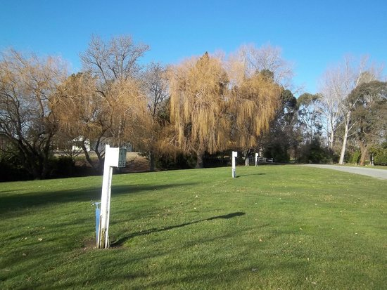 Temuka Holiday Park: Some of the Powered Sites