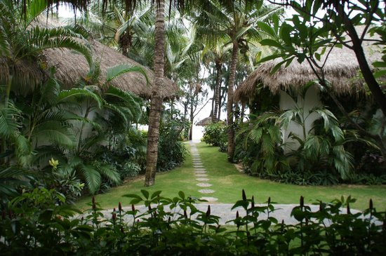 Cham Villas: Вид из бунгало