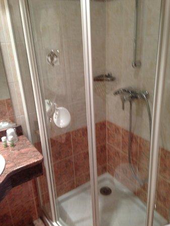 BEST WESTERN Hotel Beausejour Lourdes : baño