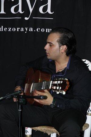 Flamenco Live Jardines de Zoraya: Гитарист
