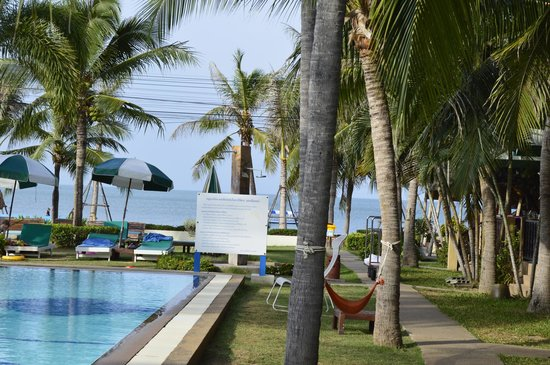 Dolphin Bay Resort: pool beach