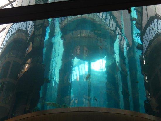 AquaDom & SEA LIFE Berlin: inside the dom