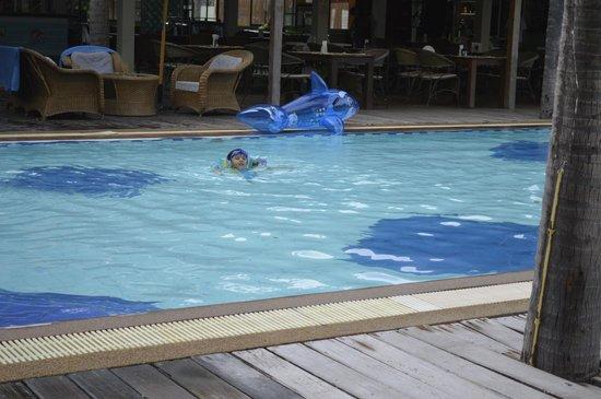 Dolphin Bay Resort : pool