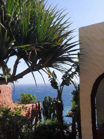 IFA Interclub Atlantic Hotel: территория отеля